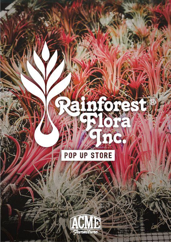 ACME_RainforestFloraInc_01