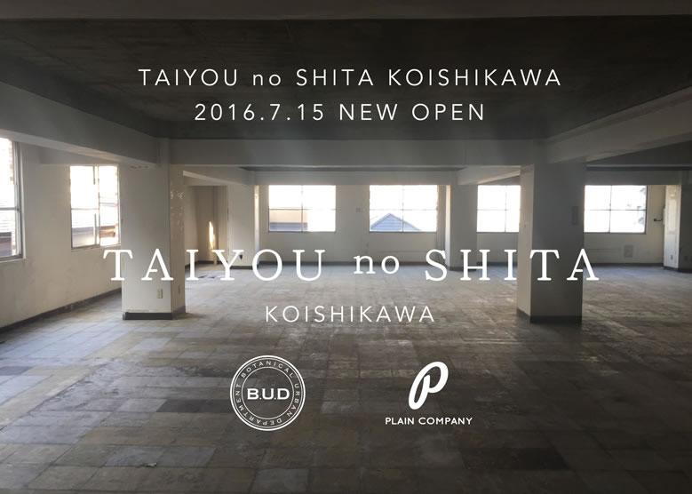 tns_koishikawa_01